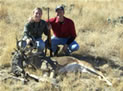 Bucks Antlers Locked - One Dead