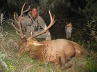 Mountain Lion Sneaks Up On Elk Hunter