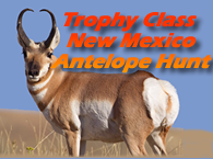 Trophy Class Antelope Hunt Opportunity