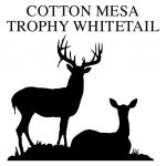 Cotton Mesa  Trophy Whitetail